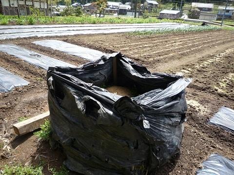 畑の土づくりのやり方がわからない。【コンポストたい肥を作ってみよう】