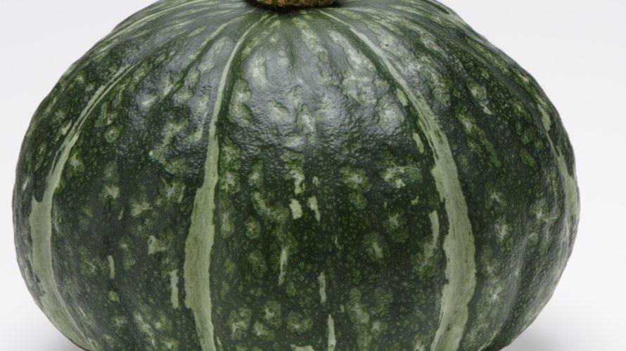 かぼちゃの育て方。仕立て方は何本にしますか【受粉の仕組みと葉の枚数】
