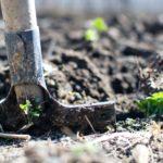たい肥とは【たい肥には、どんな種類と効果があるのでしょう】